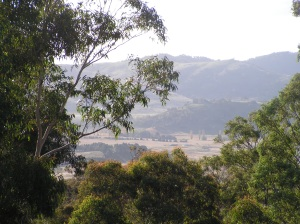 ...a stunning view down into the valley from just above the house