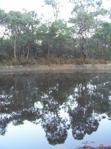 ... reflection in the still water...