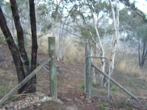 ... looking back towards the garden gate... home again